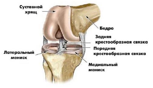 Повреждение капсульно-связочного аппарата коленного сустава лечение боль прихотьбе под коленным суставом