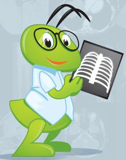программа для чтения пэт кт
